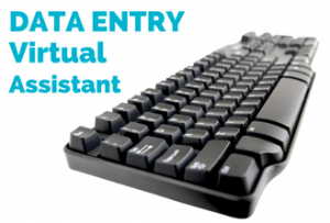 Data entry virtual assistant