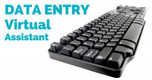 data entry professional services